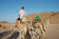 20100731_Egypten-JeepSafari_038.JPG