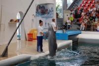 20130801_Bulgarien_Delfin-show_007.JPG